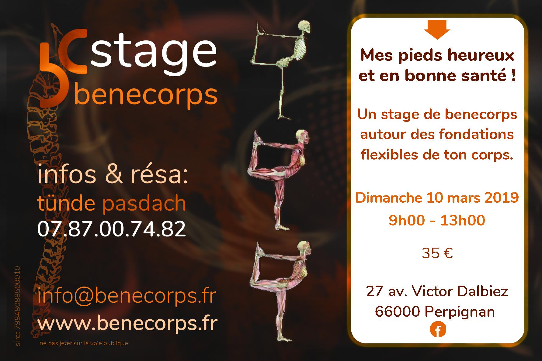 Stage Benecorps 10 mars 2019